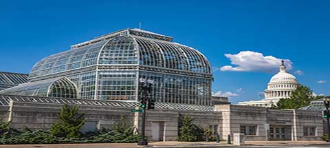 Best Botanical Gardens to See in the United States